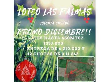 Oferta!!! Terrenos En Loteo Las Palmas!!