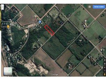 VENDO GRAN LOTE EN GRAL ALVEAR 2500 M2