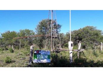 139 HECTÁREAS DE CAMPO NATURAL GANADERO EN ZONA FELICIANO,ER